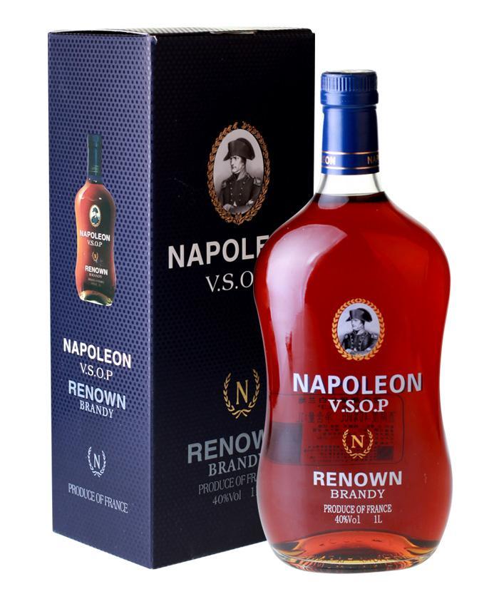 雷诺拿破仑白兰地VSOP(1000ML)